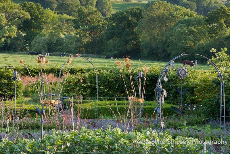 The Organic Gardens, Holt Farm-2260.jpg