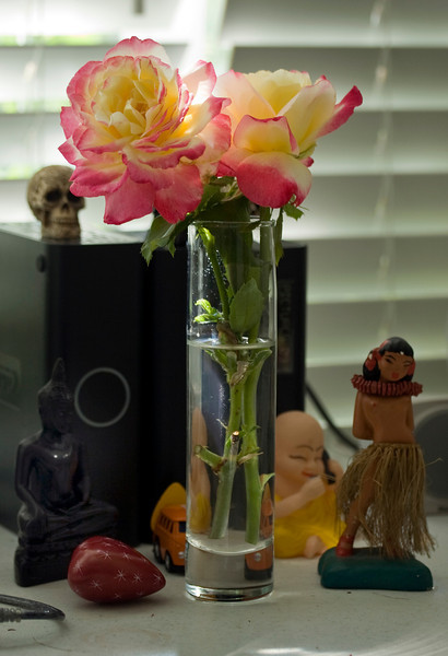 desk_flower1.jpg