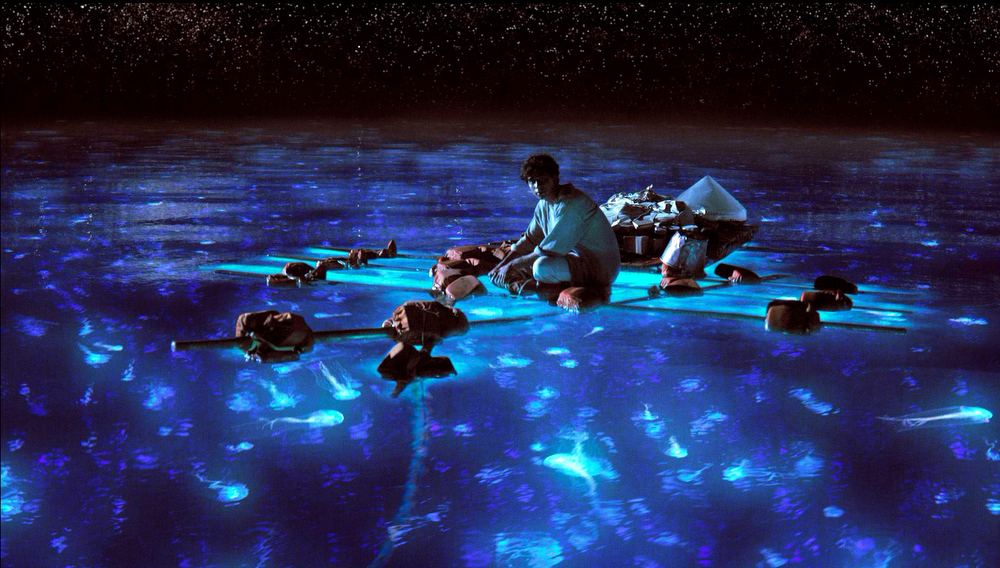Description of . Pi Patel takes in the bioluminescent wonders of the sea in Ang Lee's gem
