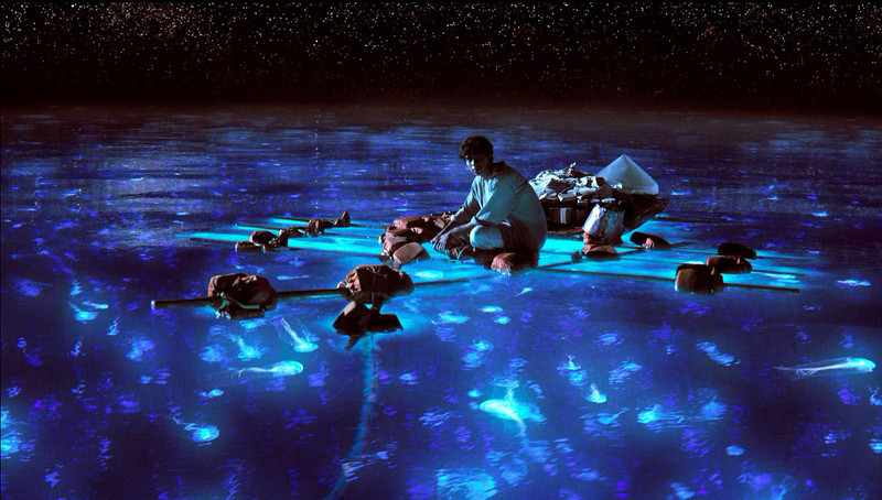 ". Pi Patel takes in the bioluminescent wonders of the sea in Ang Lee\'s gem ""Life of Pi.\"" Provided by 20th Century Fox"