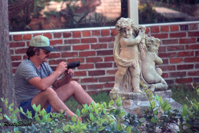 Kapot Tree Tampa 1987