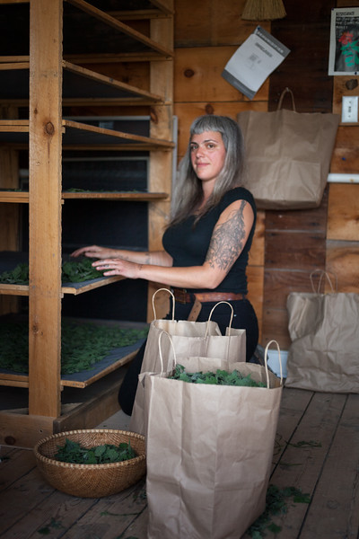 Edible Hudson Valley Magazine shoot on women herbalists.