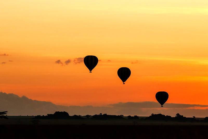 Breakfast Balloons over Serengeti Dawn