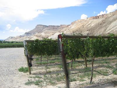 Grand Junction Trip 2006