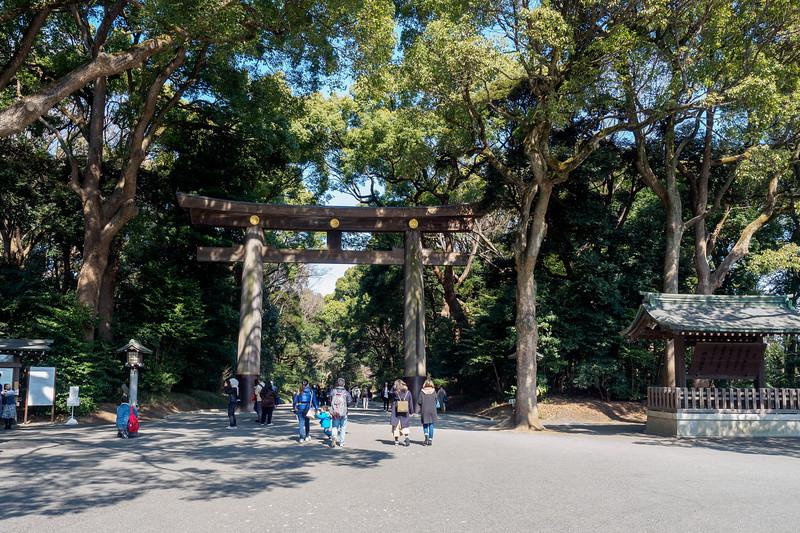 Giant Torii (Entrance to Meiji Shrine)