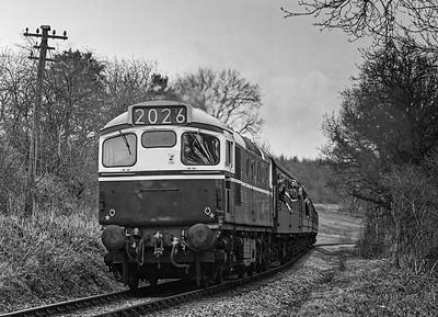 Mid-Hants Railway Diesel Gala: March 1994.