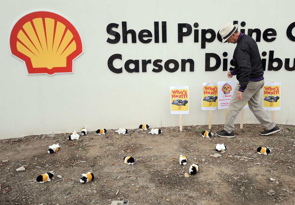 . Residents of the Carousel Tract neighborhood in Carson staged a protest against Shell Oil Friday by marching with signs from Dolphin Park to a Shell facility on Wilmington Avenue.  Alvaro De La Torre places protest signs amongst stuffed guinea pig toys in front of the facility. The guinea pig represents how the resident feel Shell treats them. 20130308 Photo by Steve McCrank / Staff Photographer