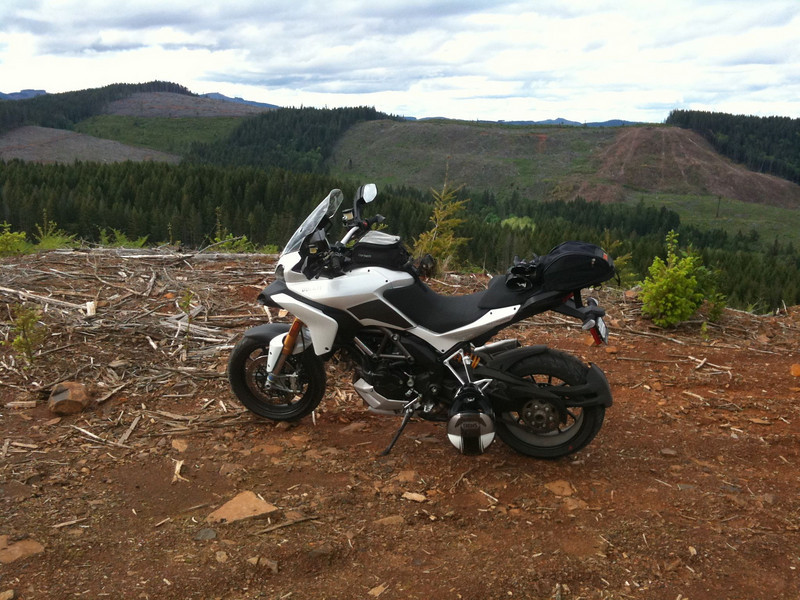Ducati.MS member 'motocow' Location: Sherwood, OR, USA