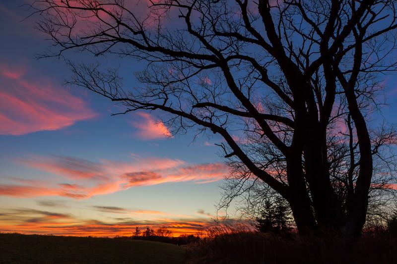 milford sunrise-8891.jpg