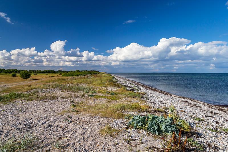 Danmark-Miljøer-Endelave-2013-07-31-_A7X0108-Danapix.jpg
