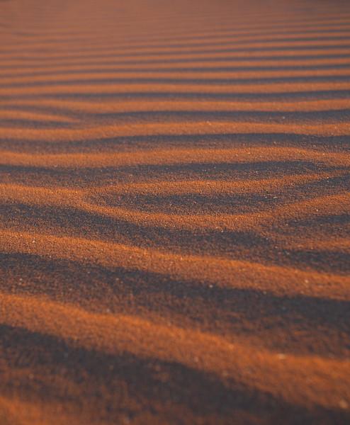 Sand Pattern - 5874.jpg