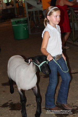 2011 4-H Sheep Show