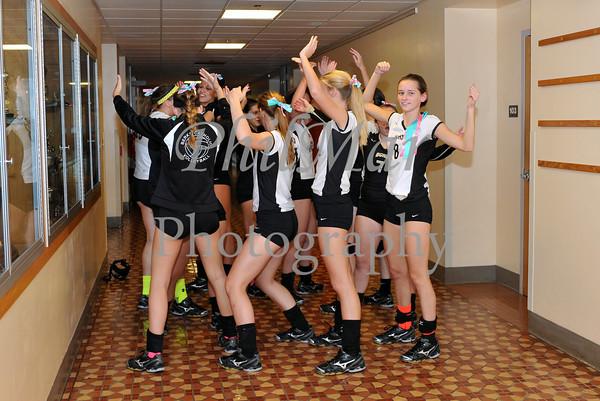 Varsity - Brandywine vs Berks Catholic Girls Volleyball