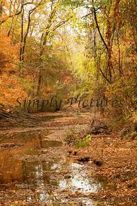 Banita Creek121 copy