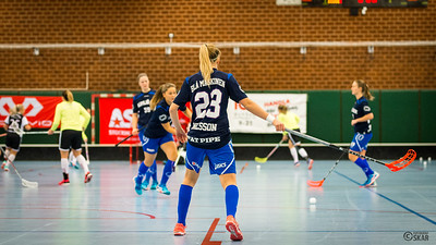 2017-01-19 DAM Älvsjö-Huddinge