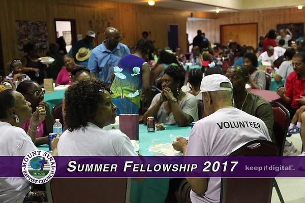 Summer Fellowship 2017
