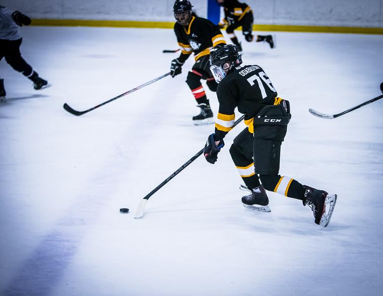 Bruins2-492.jpg