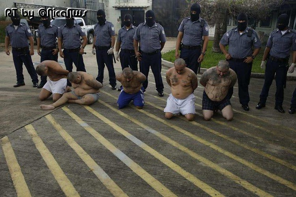 CR_NEGATIVE_CriminalProtectionNiPoz.jpg