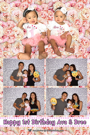 Ava & Bree's 1st Birthday
