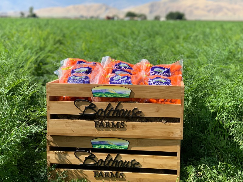 #sponsored I learned so much from my dream trip to #BolthouseFarms in Bakersfield, California. Here is some awesome info about their delicious carrot juices