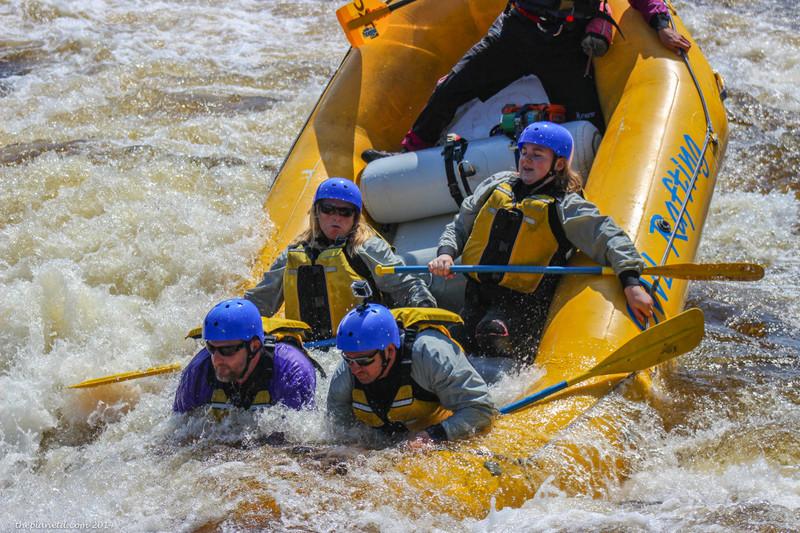 owl-rafting-ottawa-river-42.jpg