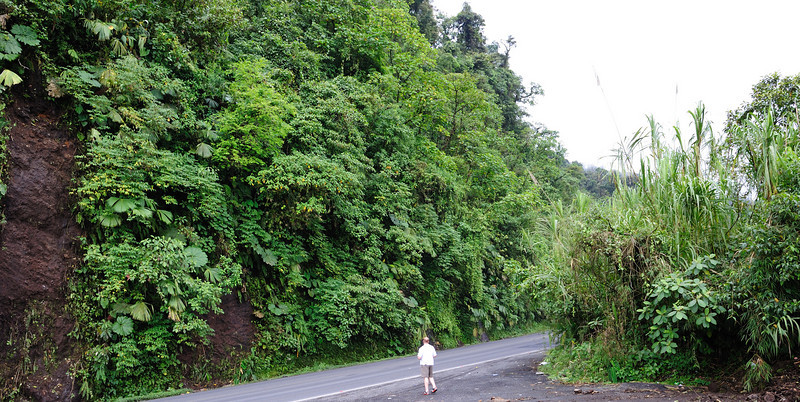 costa_rica_roadside_hill_and_man.jpg
