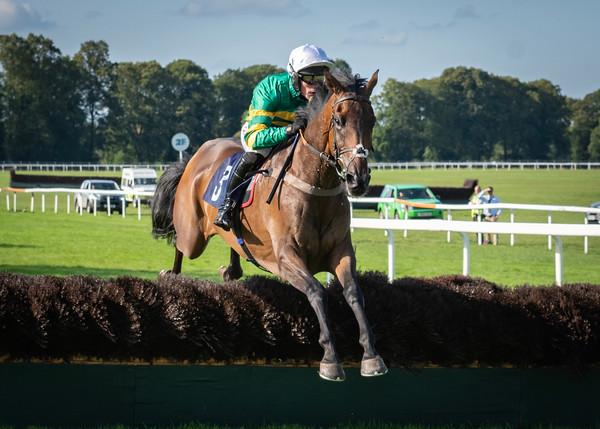 Race 8 - Duc De Bourbon