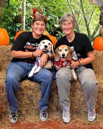 Howl-O-Ween 2015 Pumpkin Patch