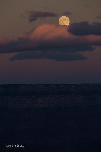 Arizona_GC_MK_III-20131116-0168.jpg
