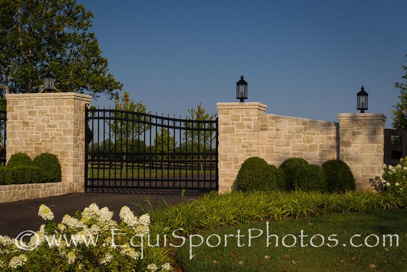 VinMar Farm, Versailles, KY. 6.28.2012