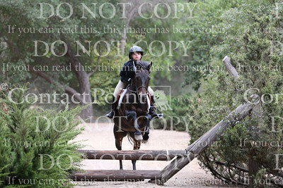 Foxfield Summer Show - Cross Country - July 21, 2013