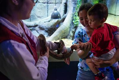 2018-04-23 Austin Aquarium (pics by Dad & Richie)