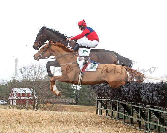Warrenton Hunt Point to Point 3-17-18