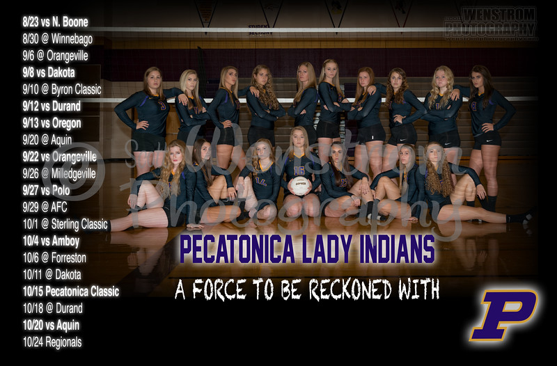 pec vb schedule 2016.jpg