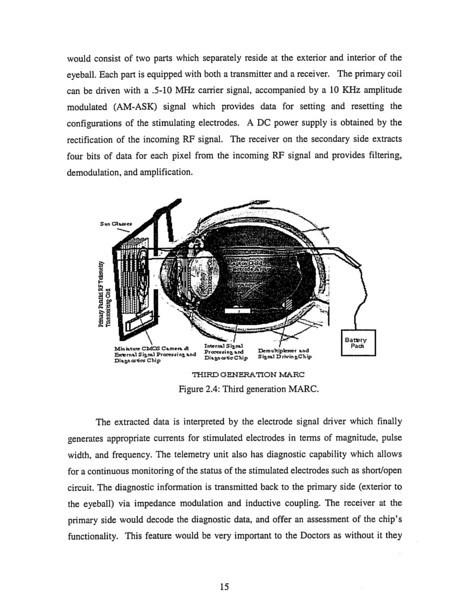 retina.5.jpg