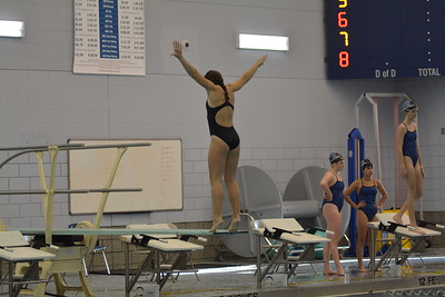 Oswego Girls Swim and Dive Team Vs Lincoln Way East 2017