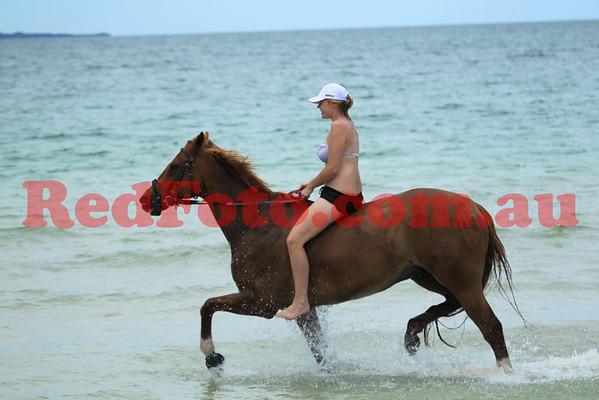 2012 12 16 Naval Base Beach 11-00 till 12-00