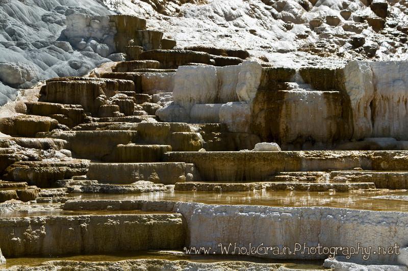 20100713_Yellowstone_2825.jpg
