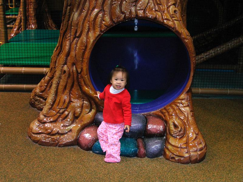 dec 23, 06 playground tree.jpg