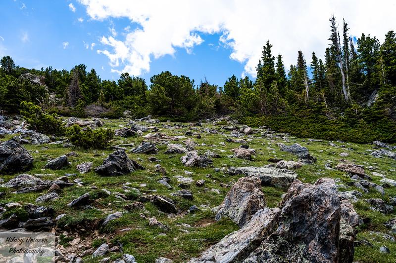 Twin Peaks RMNP-31.jpg