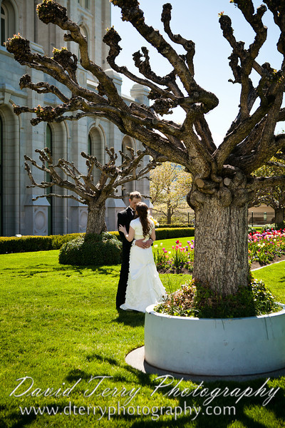 David Terry Photography - Emily and Garrett Wedding at Salt Lake Temple