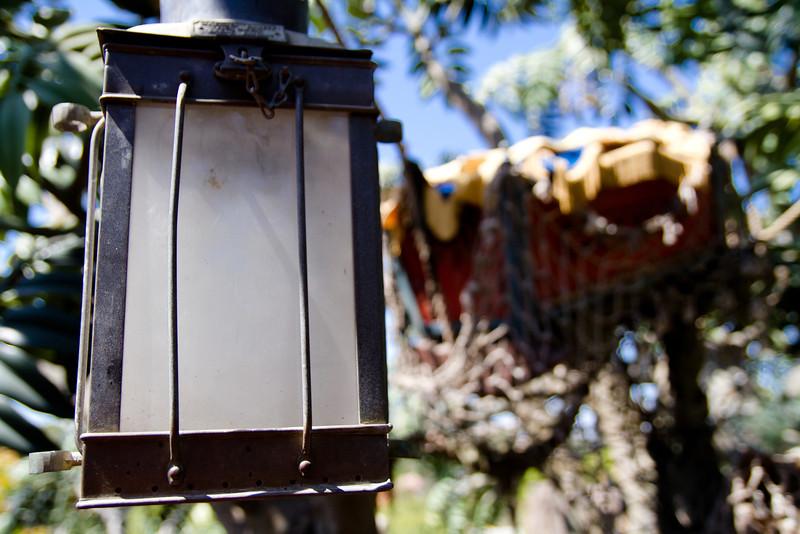Light in Tarzan's Treehouse