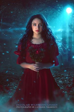 Fantasy/historic  covers