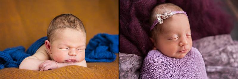 Newborns 201513b.jpg