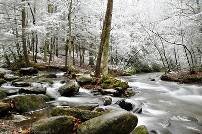 Cades Cove TN. - Great Smoky Mountains National Park