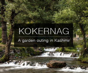 A day trip in Kokernag, South Kashmir, India