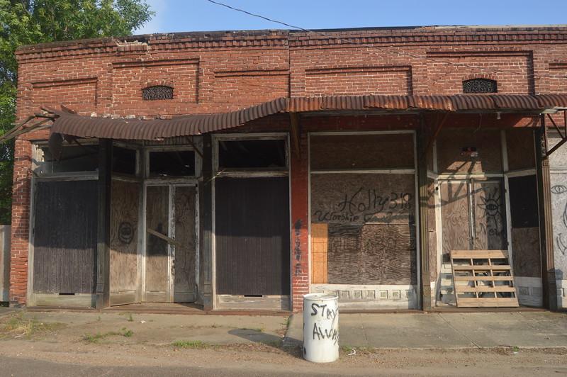 005 Front Street, Alligator.JPG