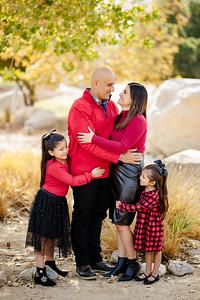 Castillo Family 2020
