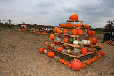 McGarrah Farms Pumpkin Patch - 10/23/2010