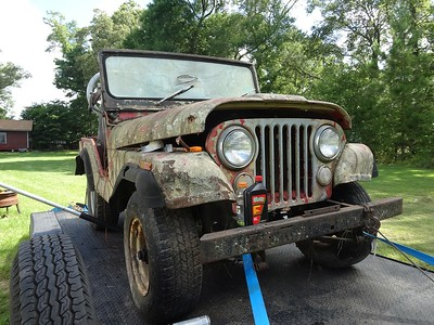 WILLYS/JEEP  CJ5  ROACH